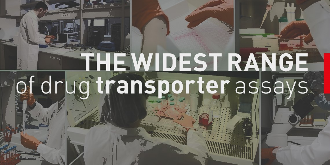 Drug Transporter Assays